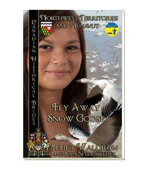 Fly Away Snow Goose book cover